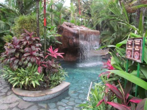 Baldi Hot Springs Resort